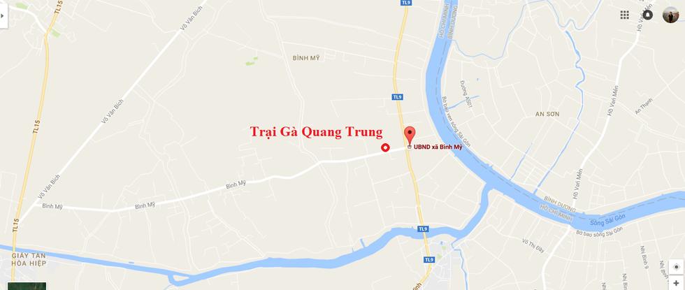 Trang gà Quang Trung