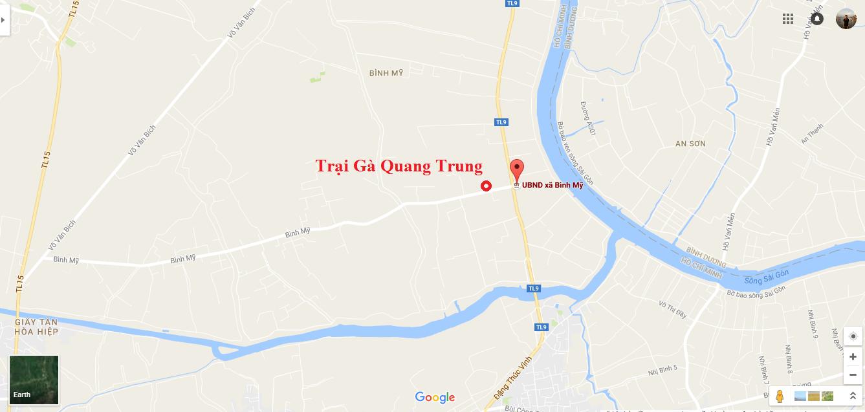 Gà nòi hàng đi C1 cho toàn thể anh em gần xa - Trại Gà Quang Trung